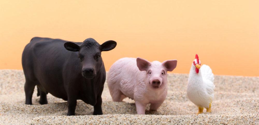 動物の死体とは?廃棄量統計の現状と死亡牛へのBSE検査について