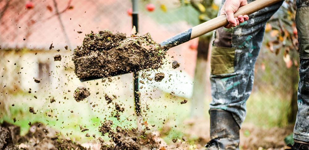 鶏糞などを原野に大量投棄、宮城県警らが書類送検