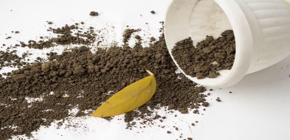 ガーデニング、家庭菜園で使い終わった土の処分方法を解説