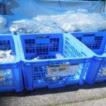 生ごみ処理機の種類、メリット・デメリットは?自治体による購入補助を解説!