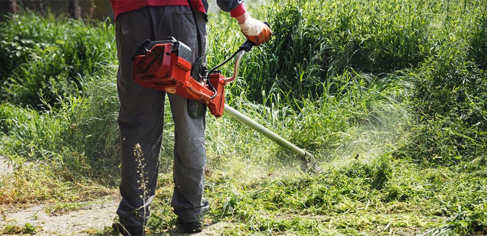 草刈り業務受託し不法投棄、津市から870万円を受領した男性逮捕
