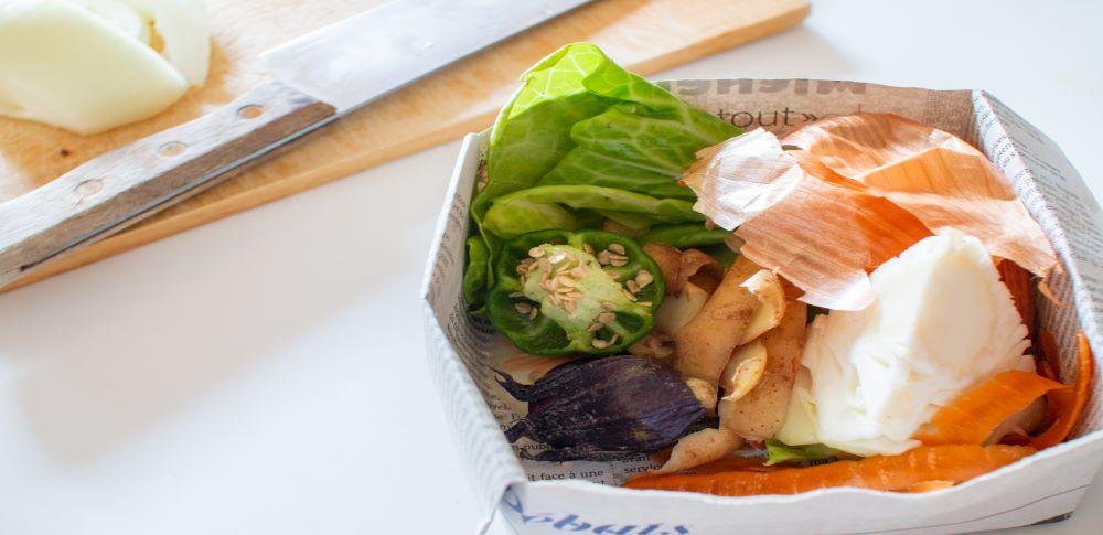 10月は食品ロス削減月間!「食品ロスの削減の推進に関する法律」を解説!